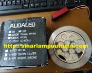 Downlight LED 12 watt Silver Body Audaled