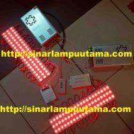 Lampu LED Module 3 mata RGB dengan Controller dan Amplifier